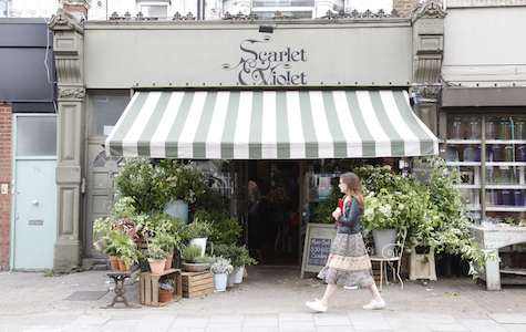 Kensal Rise Shopping - Scarlet and Violet